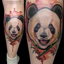Фото татуировки, панада на ноге у девушк
