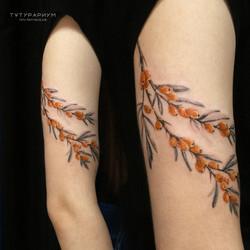 Фото татуировки, облепиха в реалистистич