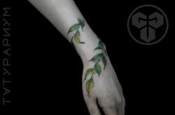 Фото татуировки, нежная веточка оплетающ