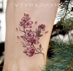 Фото татуировки, цветы сакуры реализм у