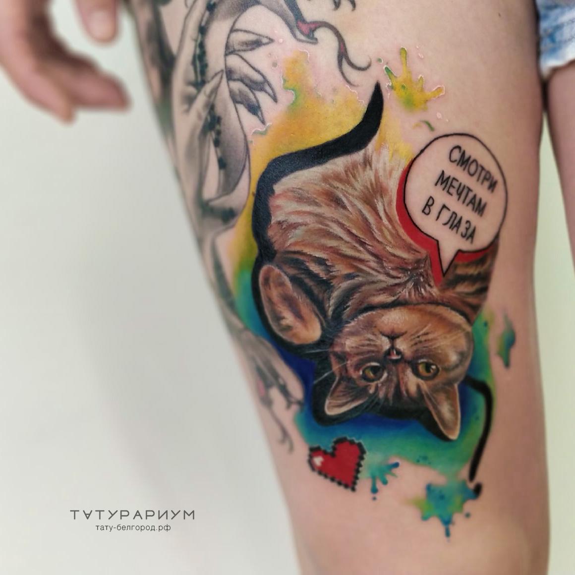 Фото татуировки, кот в акварельных тонах