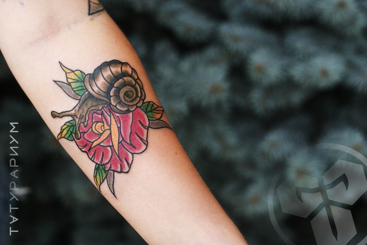 Фото татуировки, олдскул роза с улиткой