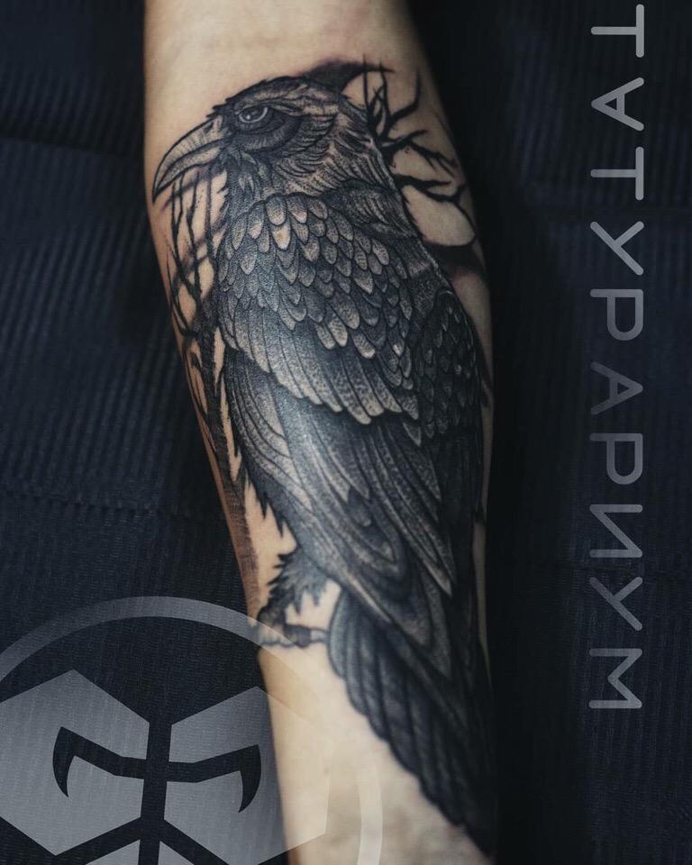 Фото татуировки, черный ворон на предпле