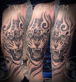 Фото татуировки, реалистичный тигр у муж