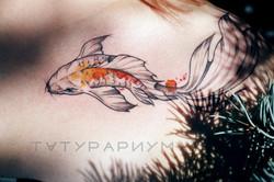 Фото татуировки, золотая рыбка на ключиц
