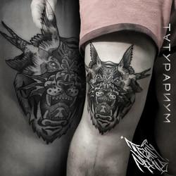 Фото татуировки, тирг с оскалом на колен