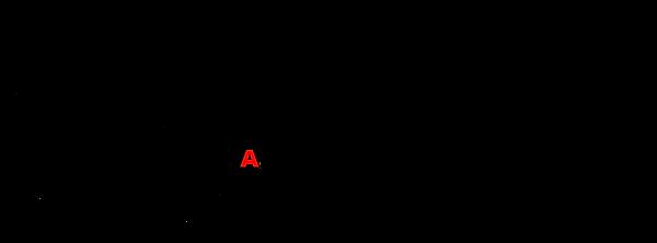 logo_OAN_2020.png