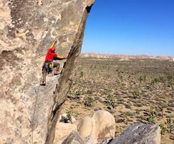 Headstone Rock, Joshua Tree National Park, California