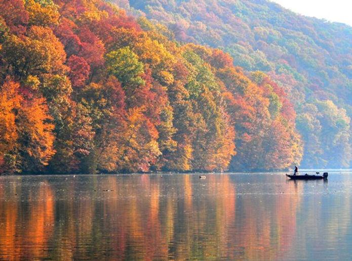 fall_fish.jpg