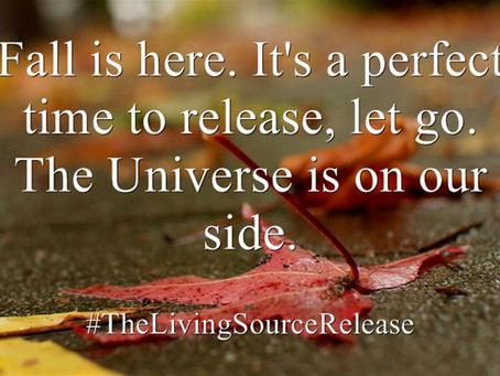 Release, Relax, Relate