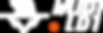吾迪logo-fin.png