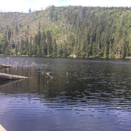 der Stubenbacher See
