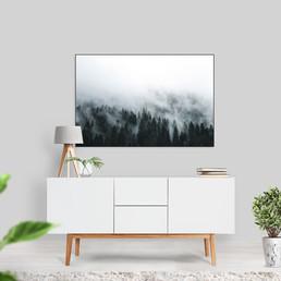bos-in-mist2.jpg