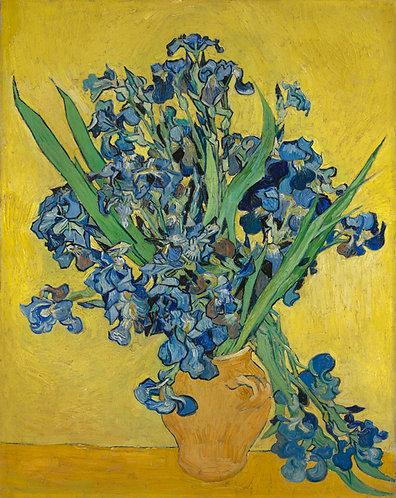Irissen, Vincent van Gogh
