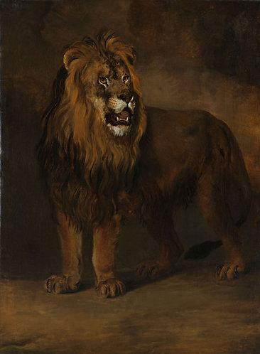 Leeuw uit de menagerie van koning Lodewijk Napoleon -  Pieter Gerardus van Os