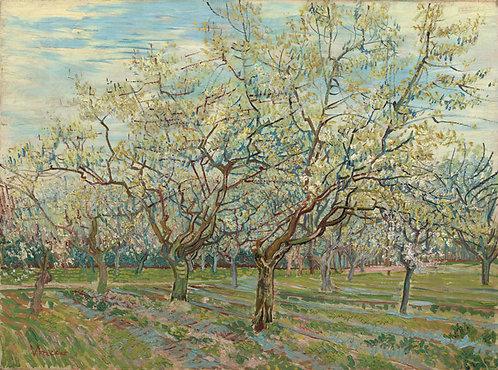 De witte boomgaard, Vincent van Gogh
