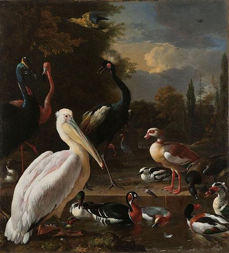 Het drijvend veertje, Melchior d'Hondecoeter