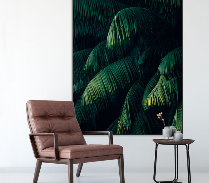 plant-zwart-groen.jpg