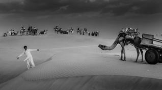 Thar Desert - Rhajasthan - India