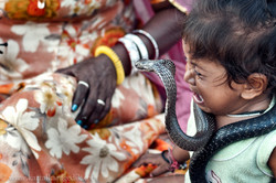 DAUGTHER OF A SNAKE CHARMER