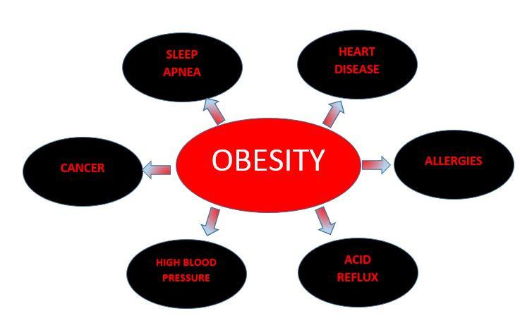 ObesityRisks.JPG