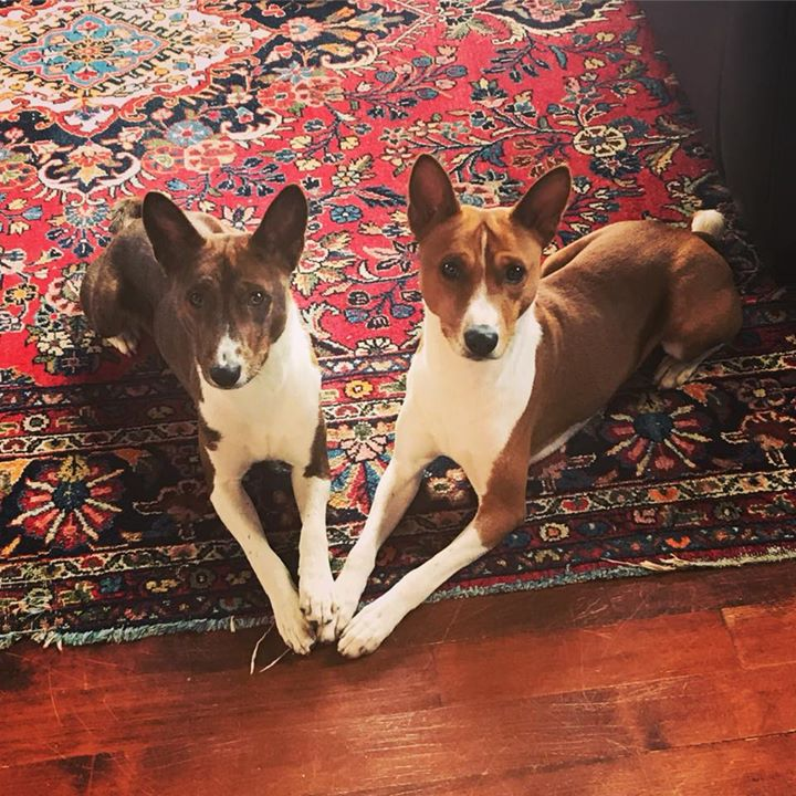 Logan & Presley