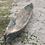 Thumbnail: Primitive Grey Canoe