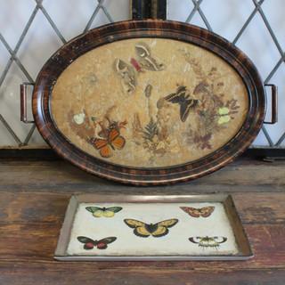 butterfly trays