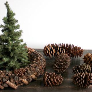 Pine Cones, wreath, mini pine tree