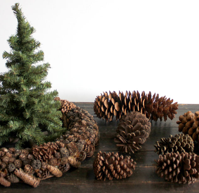 Pine Cones, wreath, mini pine tree