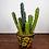 Thumbnail: Fake Potted Cactus