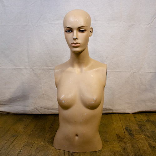 Mannequin Lady Head and Torso