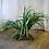 Thumbnail: Fake Wild Grass Plant