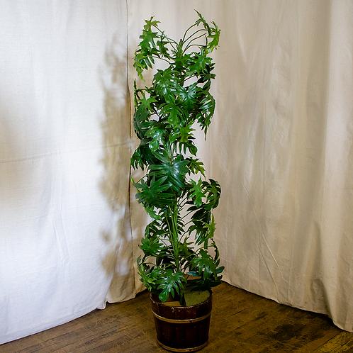 5.5ft Artificial Plant