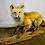 Thumbnail: Taxidermy Beautiful Fox on a Log