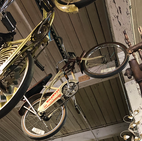 Wild West Bike