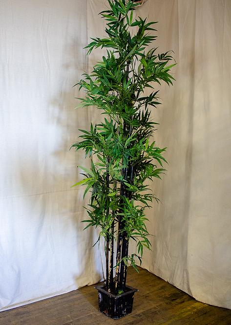 8ft Bamboo Tree
