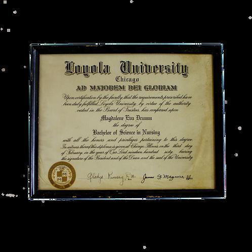 Framed Diploma Bachelor of Science in Nursing
