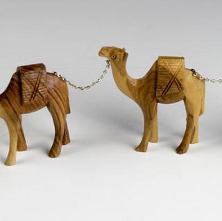 Camel chain