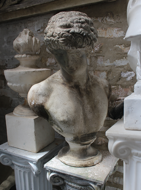 Bust of David Statue