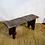 Thumbnail: Rustic Brown Bench