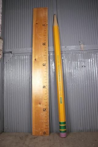 Pencil & Ruler, oversized school supplies