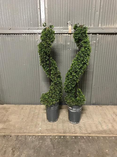 4ft Spiral Topiary