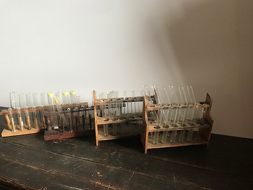 Test Tubes with Wooden Stand