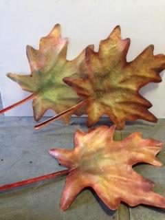 Oversized Maple Leaves Fall Autumn