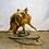 Thumbnail: Taxidermy Raccoon on Wood