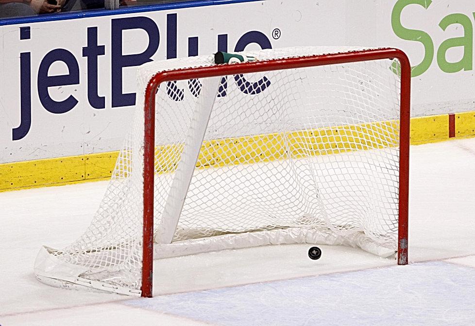 goal in net.jpg