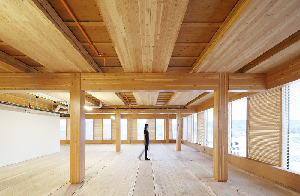 construção madeira cross laminated timber