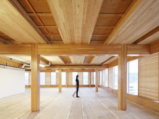 Sustentabilidade no uso da madeira
