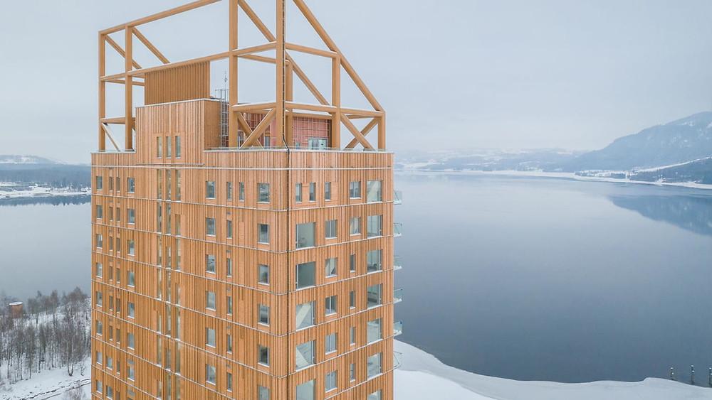 arranha céu madeira prédio